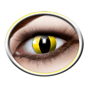 Lentilles jaunes (Yellow Cat) product image